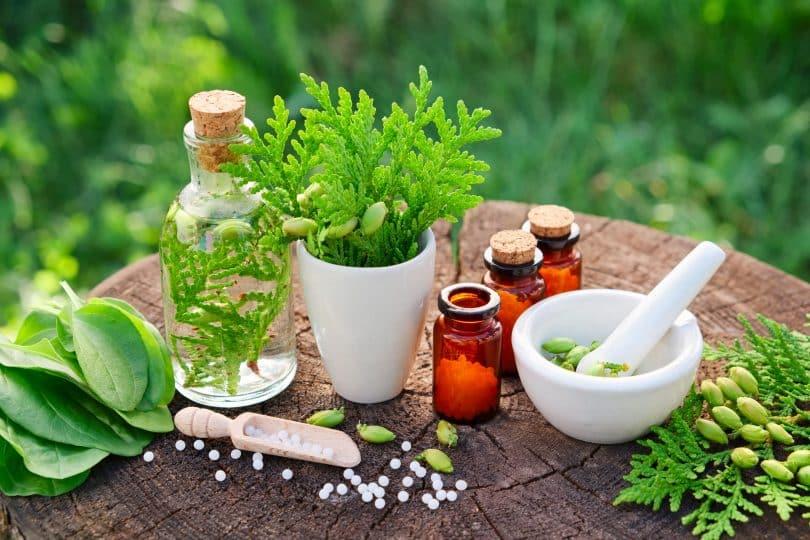 Frascos de remédios com potinhos de ervas em uma mesinha de tronco de árvore