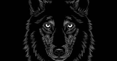 Desenho de um lobo em preto e branco