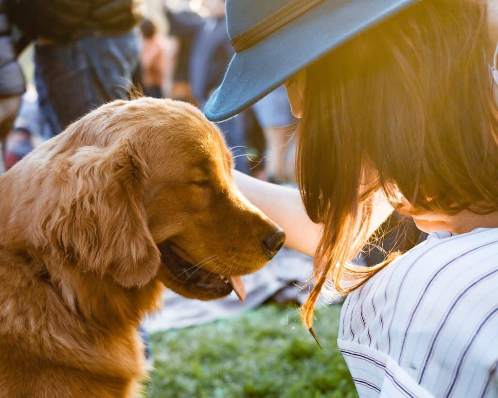 Mulher de frente para um cachorro
