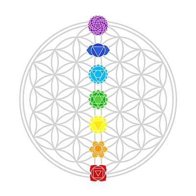 Os sete chakras alinhado no centro da Flor da Vida.