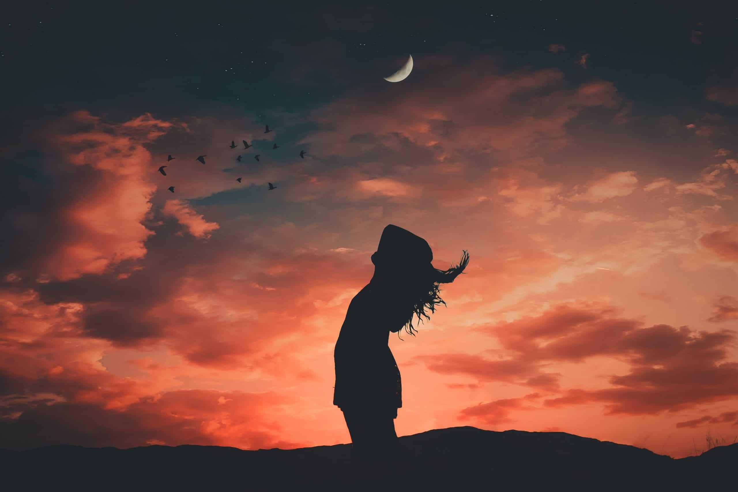 Silhueta de mulher com céu, lua e pássaros ao fundo