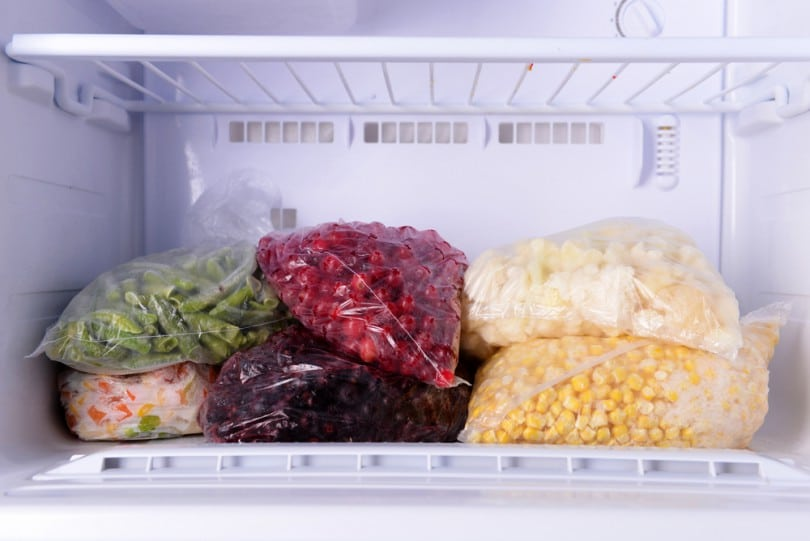 congelar os alimentos corretamente