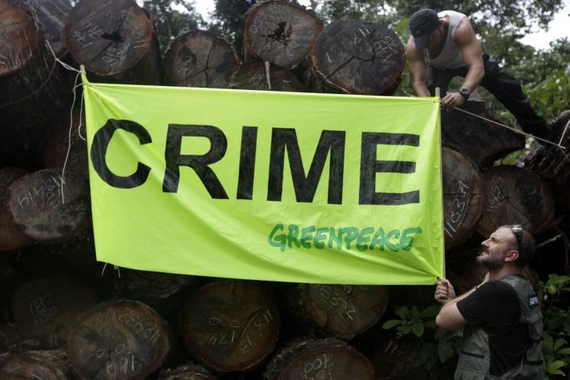 Ativistas do Greenpeace penduram uma faixa sobre toras de madeira em local próximo à Santarém (PA). A madeireira fica dentro de um assentamento, que sofre pressão para que tenha sua área reduzida e destinada para grileiros. O corte predatório e de madeira ainda é um grave vetor de destruição da Amazônia. A implementação de programas governamentais para promover o manejo sustentável da floresta na região carece de investimentos.
