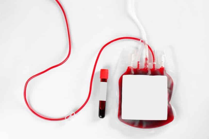 Bolsa de sangue com cápsula com sangue ao lado.