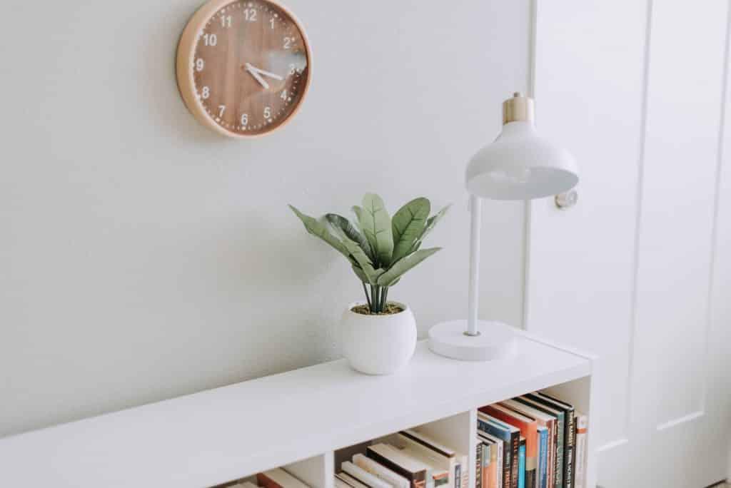 Estante com livros, um abajur e vaso com planta e na parede um relógio