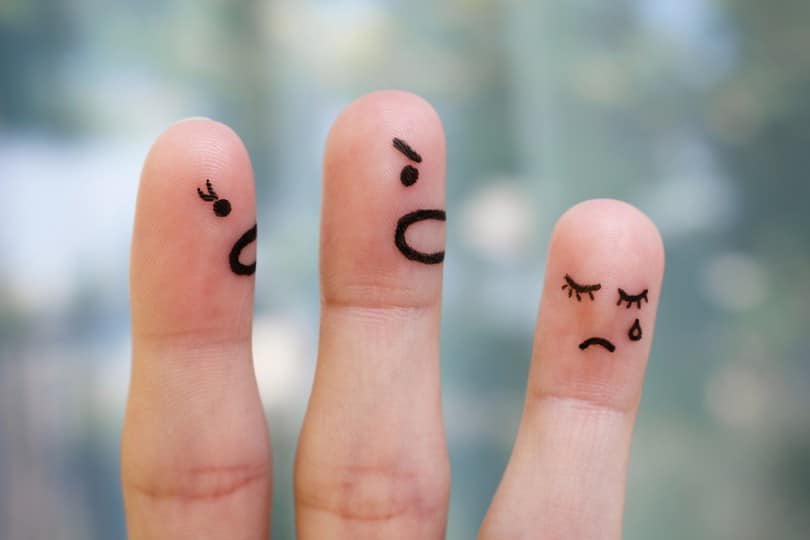 Bullying Quando A Brincadeira Passa Da Conta