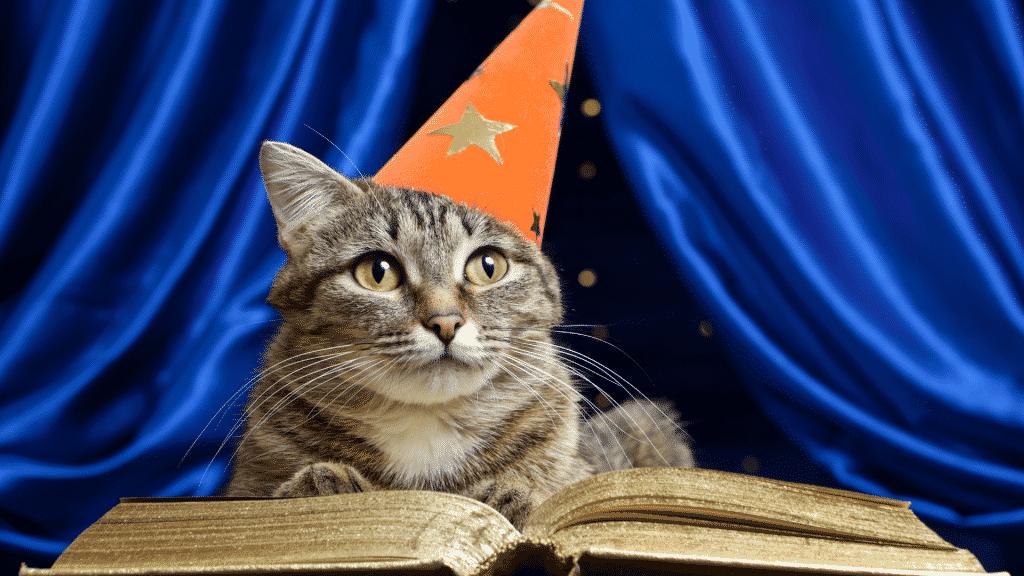 Gato com chapéu de mágica e livro de feitiço