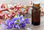 Bach flower essence with violet and red chestnut on wooden background