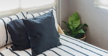 plantas para ter no quarto