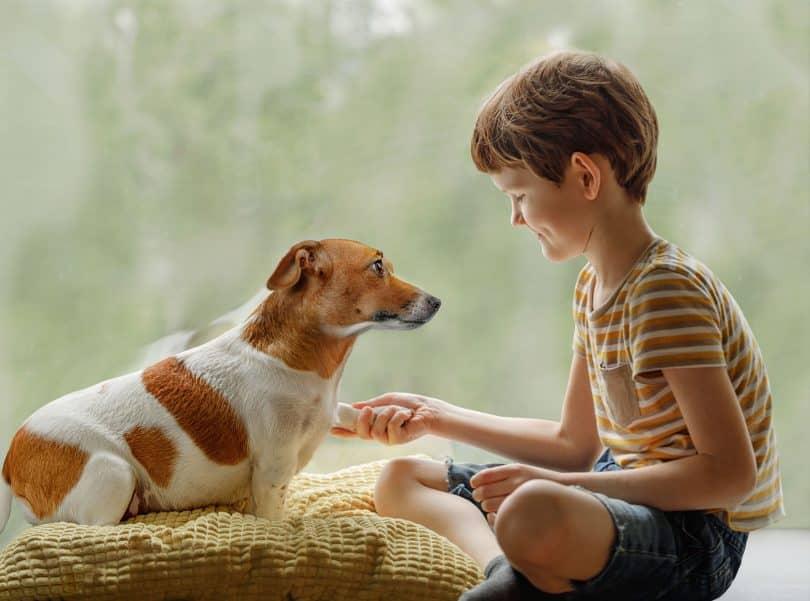 Menino branca segurando pata de cachorro.