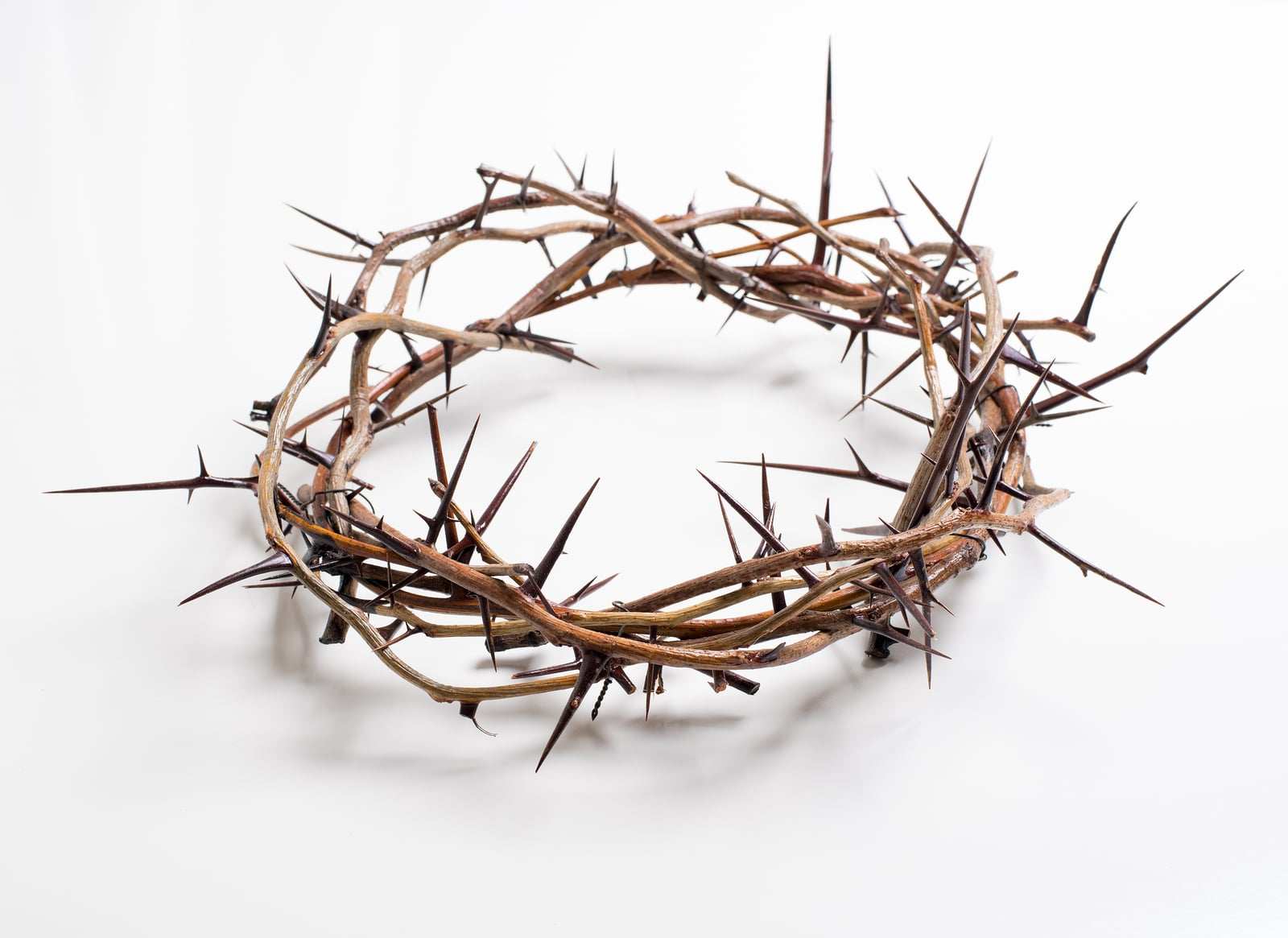 Crown of thorns on a white background Easter religious motif com