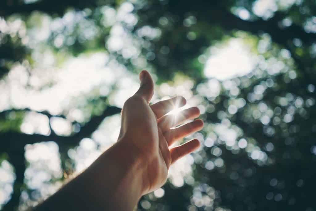 Mão estendida para cima em direção à luz do sol.
