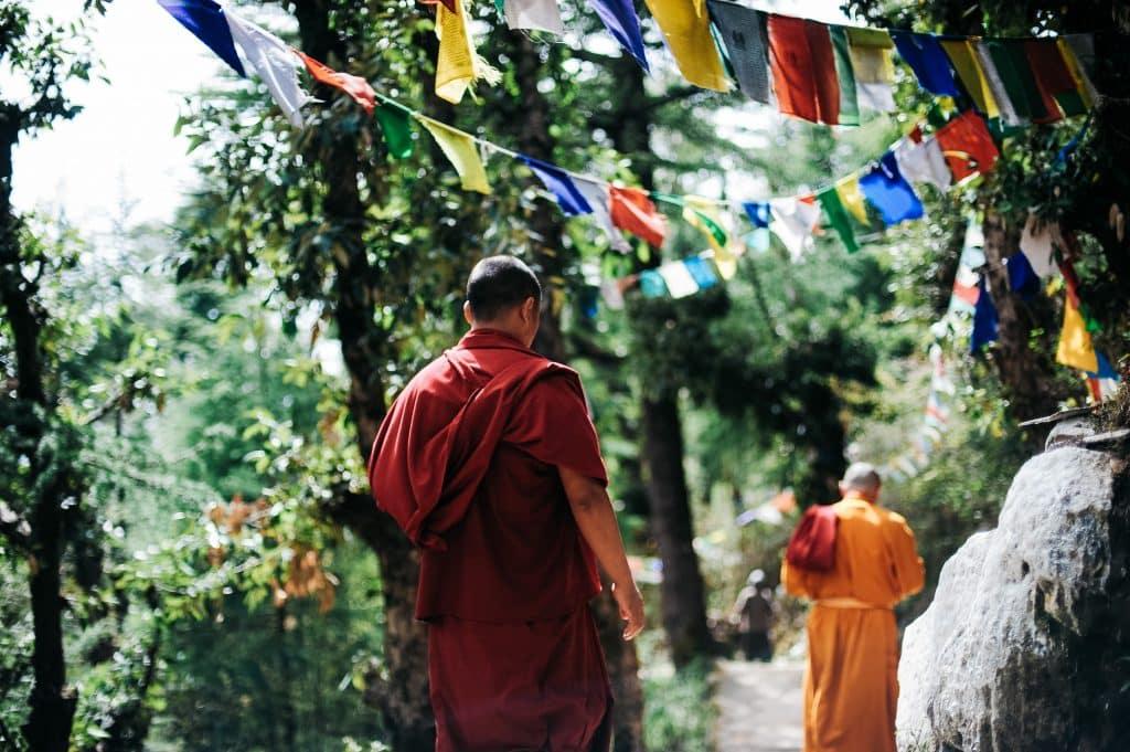 Dois monges budistas andando em meio a um corredor de árvores.