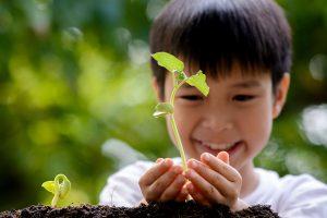 Boy Hold Seedling