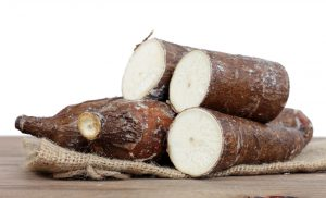 many of cutting and whole manioc (cassava)