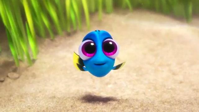 Bebê Dory do filme Procurando Dory