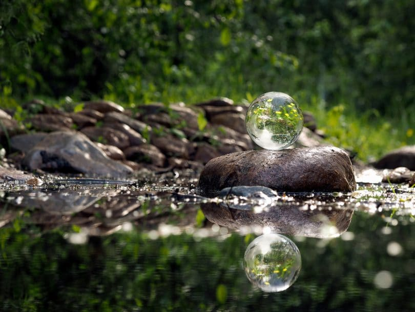 Transparent ball on the rocks. Water green trees reflected in a bowl of flowers. Concept - the environment clean water environment