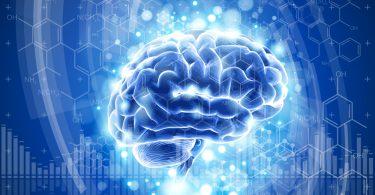 brain, blue technology concept. vector illustration. eps10