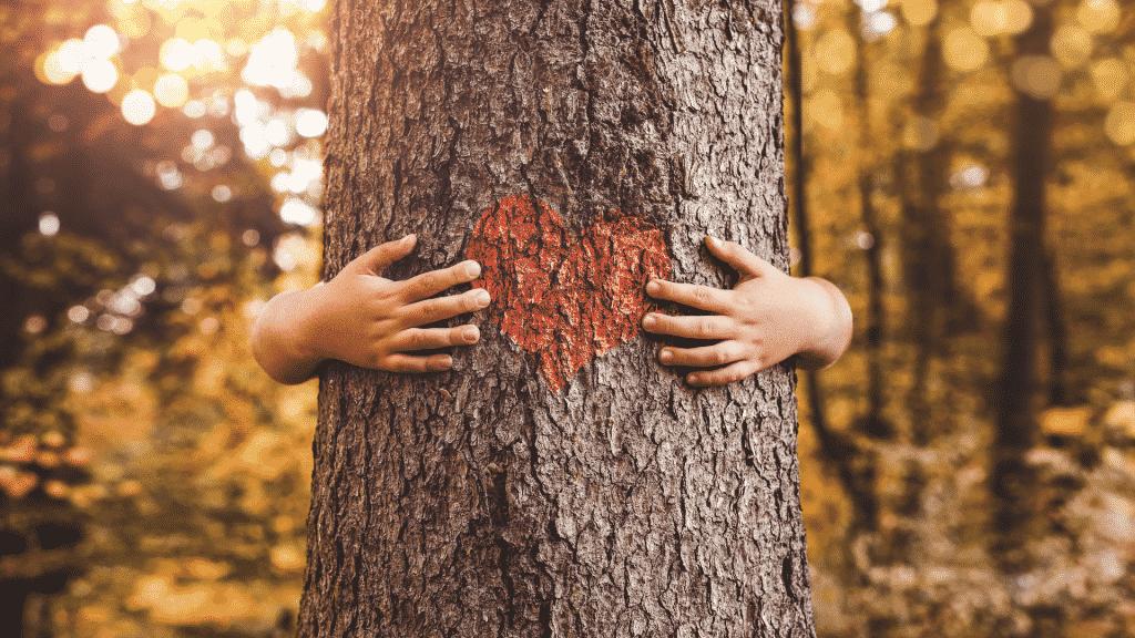 Pessoa abraçando uma árvore