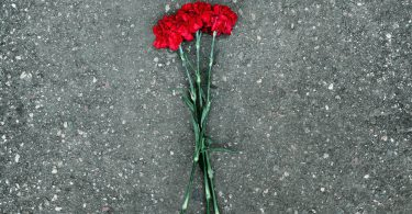 Red carnations flowers lie on the pavement symbol rest in peace