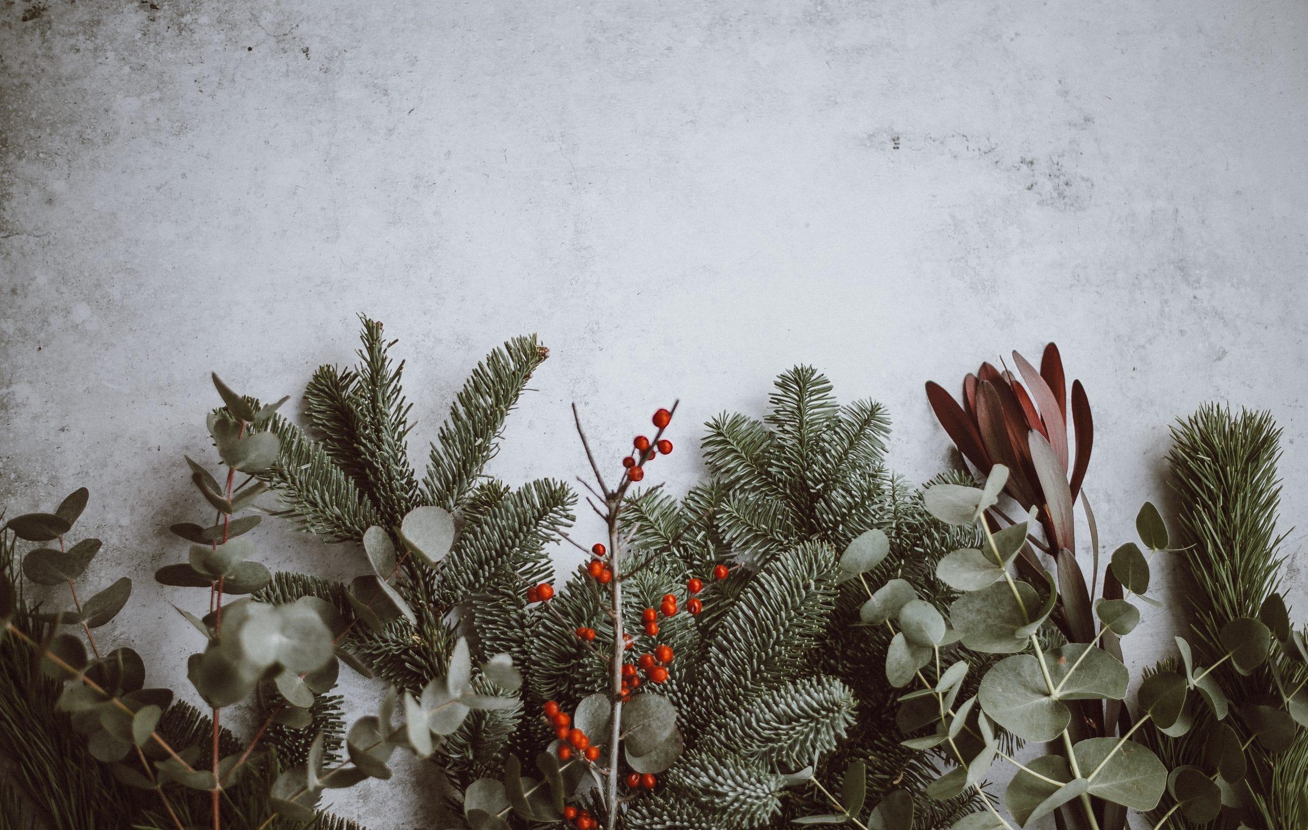 Folhas de decoração de Natal