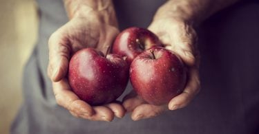Close up of elderly woman's hands holding bunch of organic Red Delicious apples. Selective focus