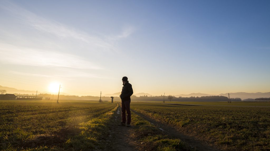 Young man standing on country road in a beautiful landscape looking back towards a setting evening sun.