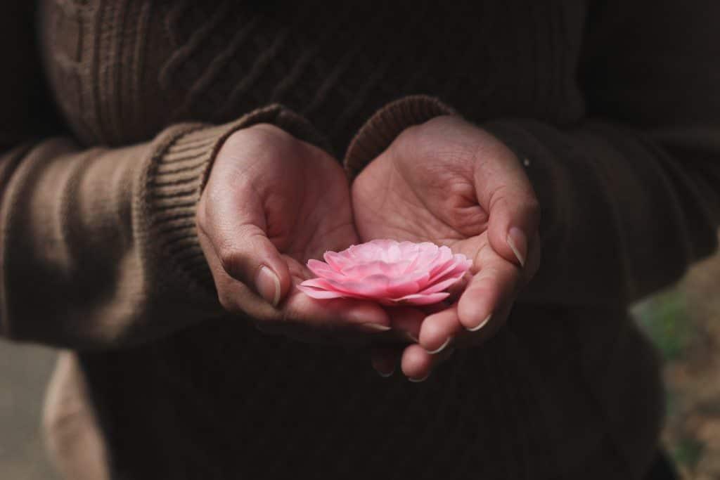 Mãos femininas segurando uma flor de lótus.