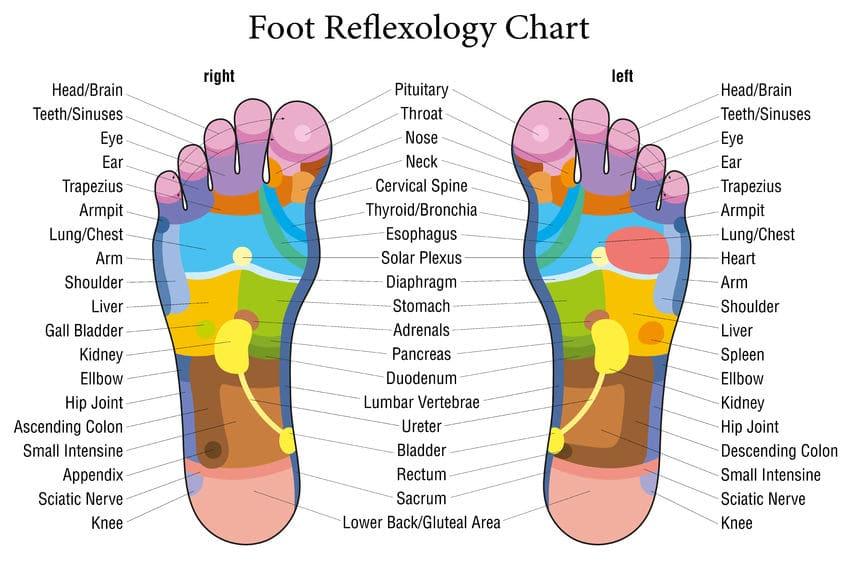 Ilustração de pés.