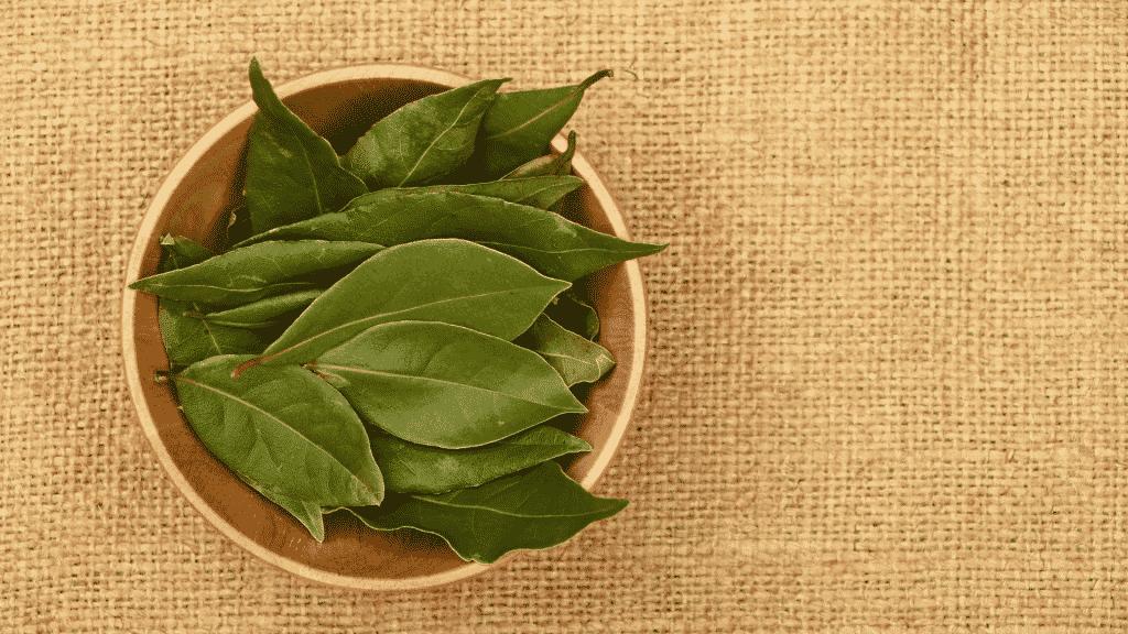 Bacia de madeira com folhas de louro