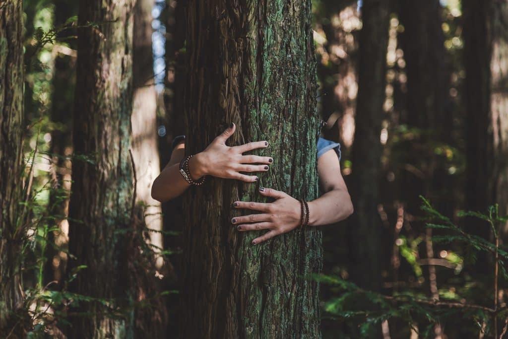 Mulher abraçando uma árvore