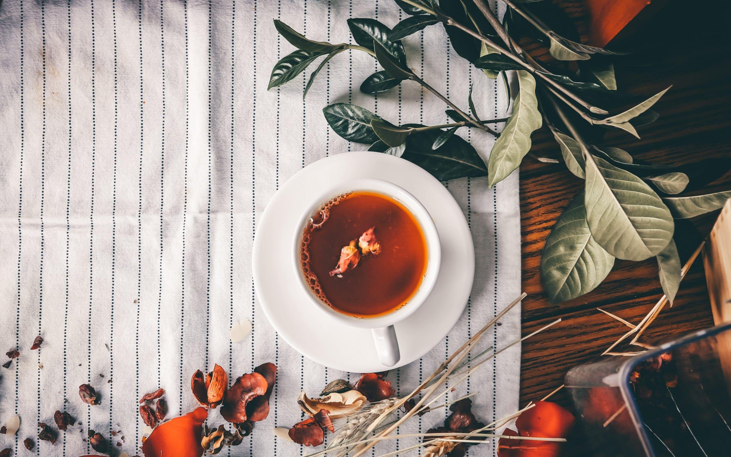 Chá em uma mesa com plantas