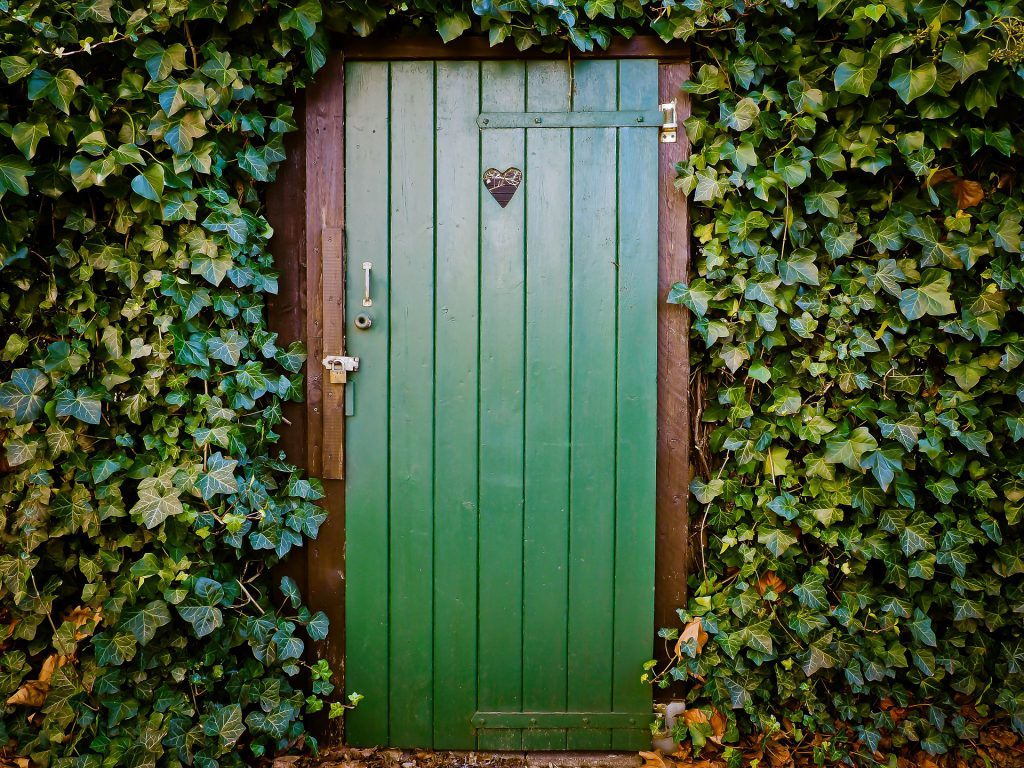 Porta verde em uma parede de plantas. A porta tem um pequeno buraco em forma de coração.