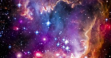 Sementes das Estrelas