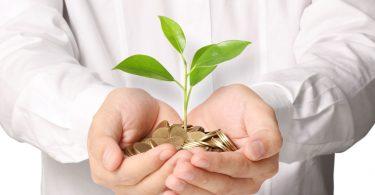 Mãos juntas segurando um punhado de moedas com uma muda de planta.