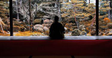Pessoa sentada com as pernas cruzadas em cima de um banco olhando a natureza.