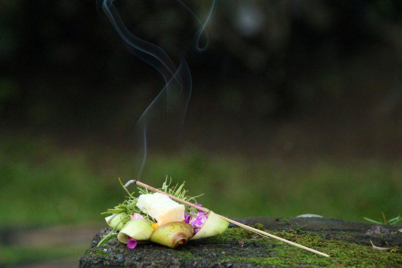 Incenso queimando em cima de flor e pedra, no meio da floresta.