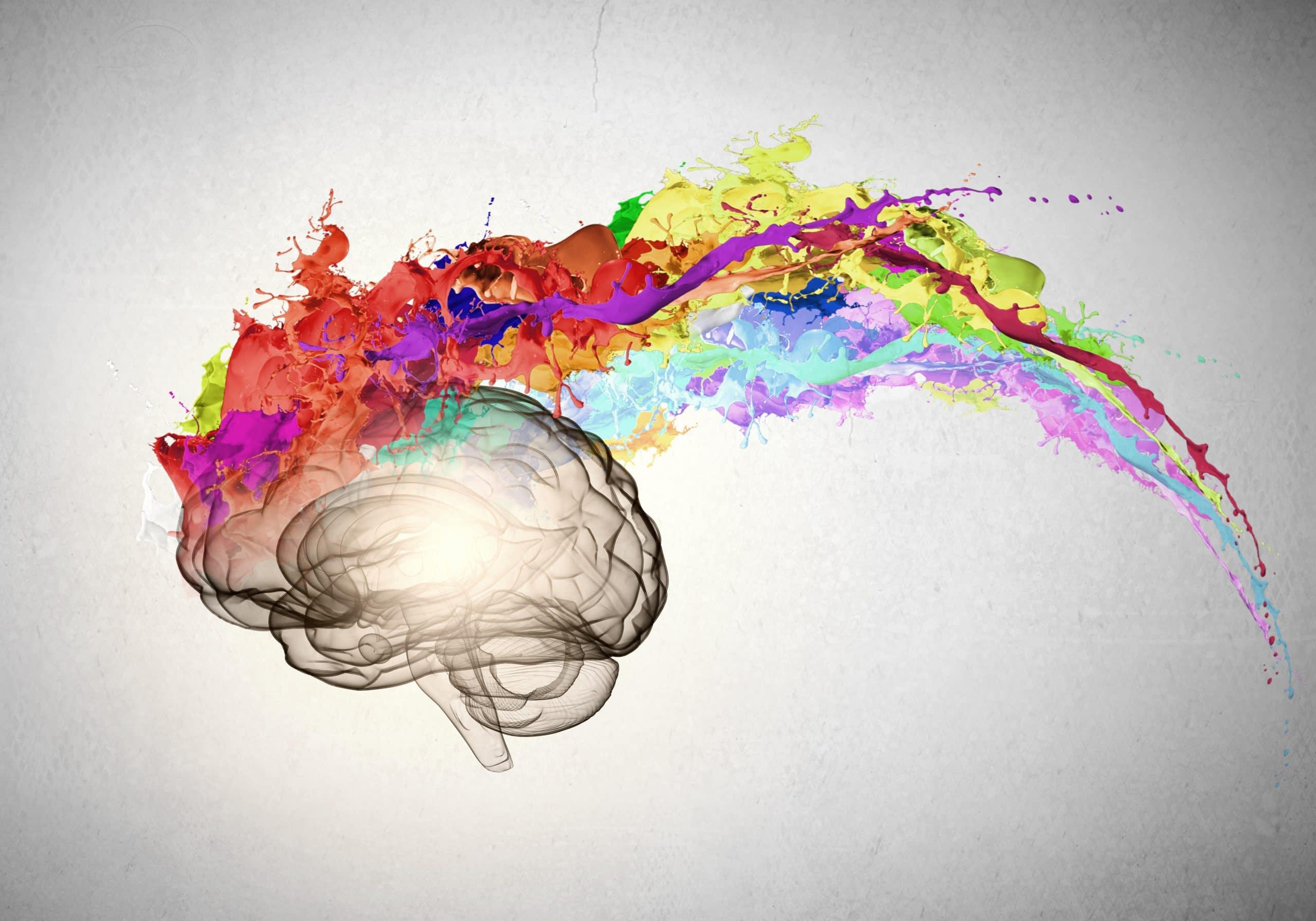 Desenho gráfico de um cérebro com muitas cores. Conceito de muitas ideias. Limpeza da mente.