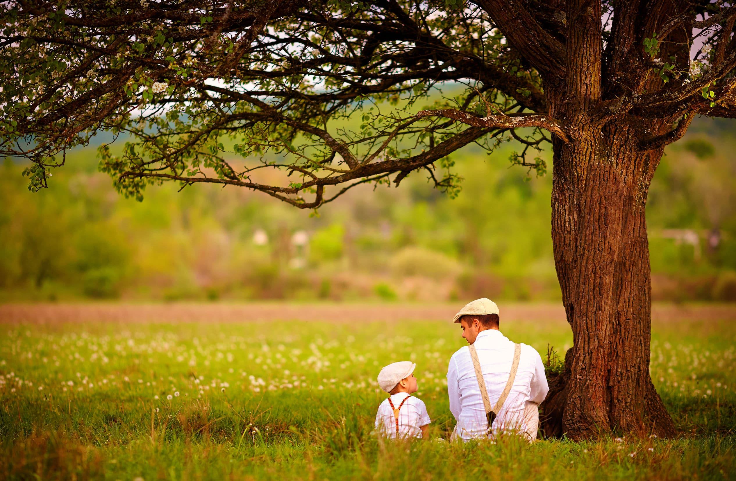 pai e filho sentado debaixo da árvore no gramado da primavera