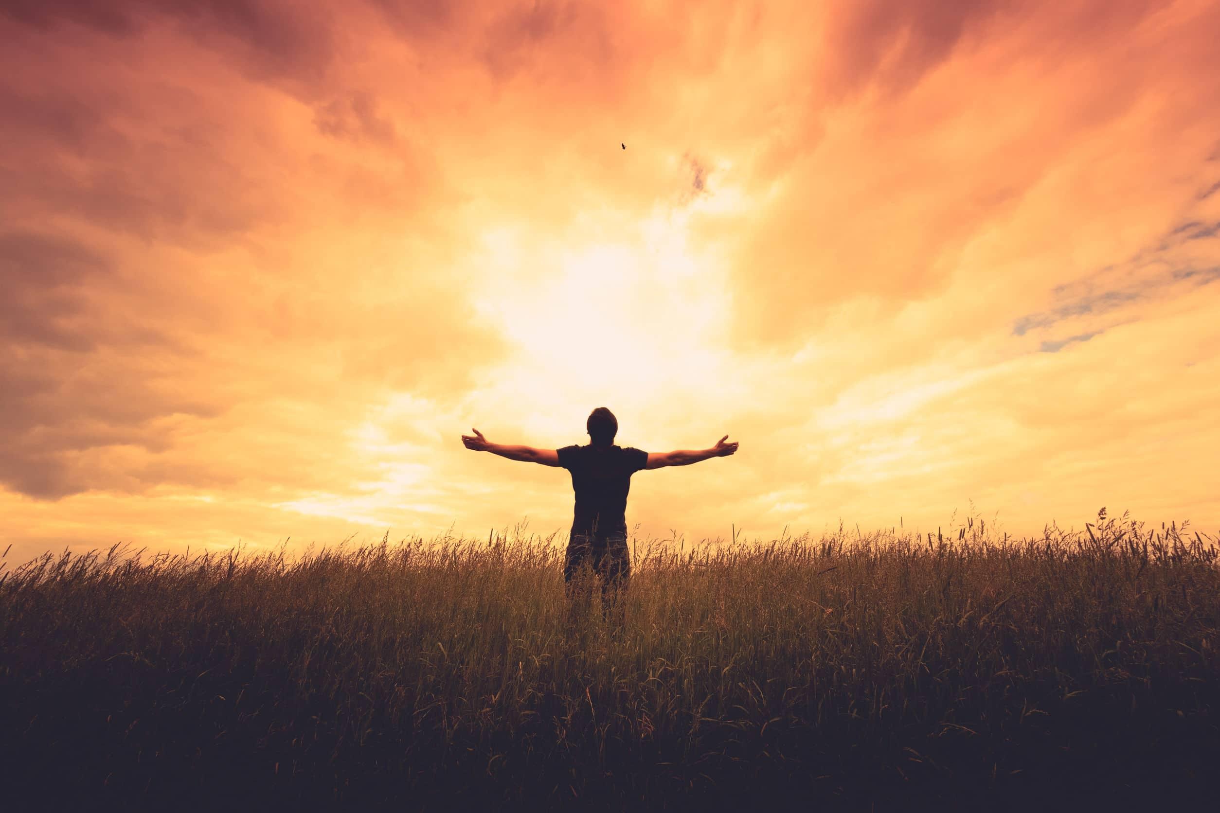 silhueta do homem em pé em um campo ao pôr do sol