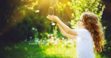 Menina segurando planta verde, nova, na luz solar.