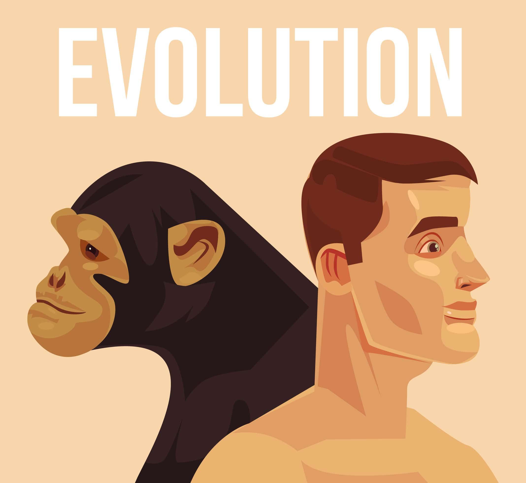 Imagem gráfica de um homem e uma macaco. Ambos olham em direções opostas. No topo da imagem está escrito Evolução em inglês.
