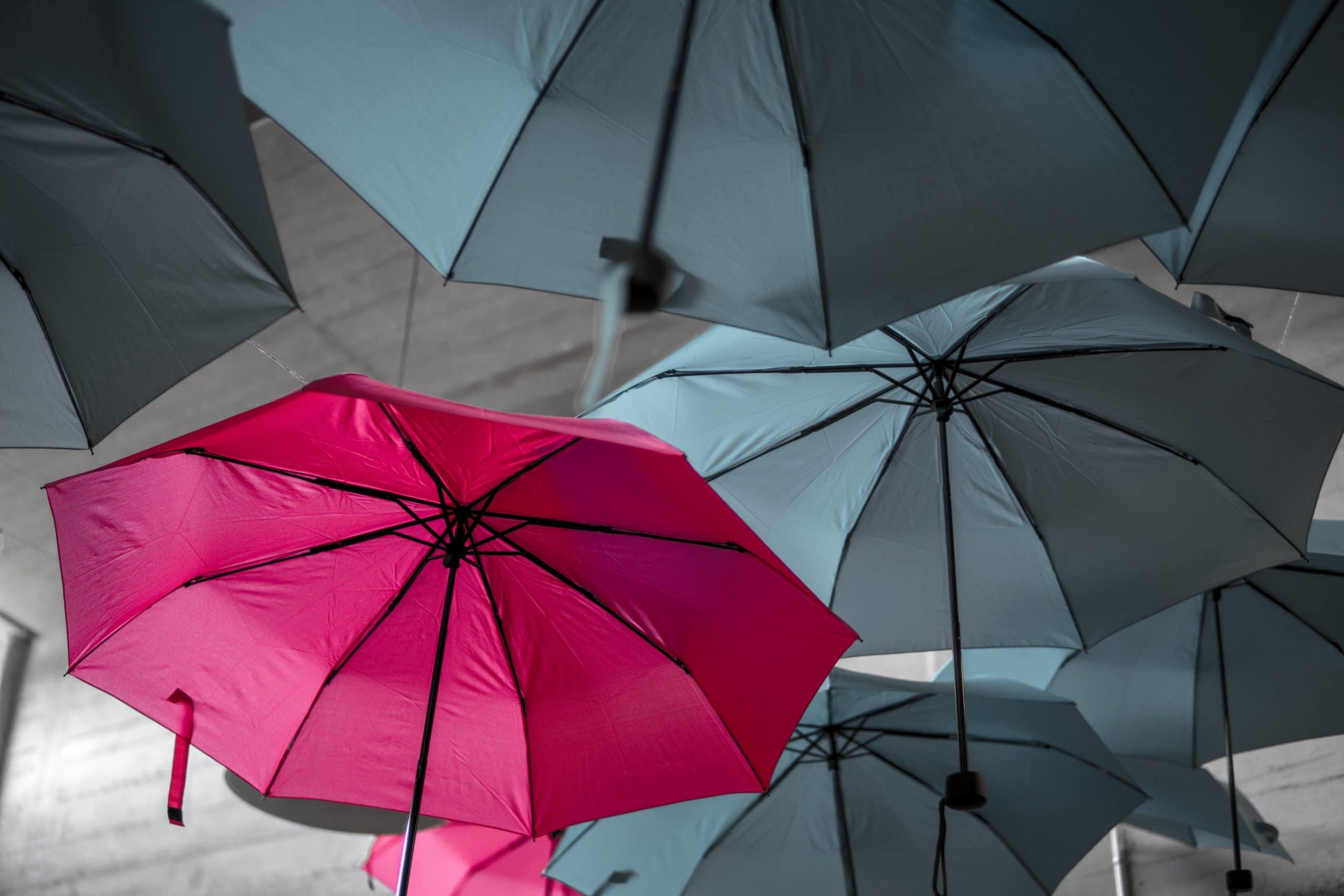 Guarda-chuvas pretos e no meio um rosa. Conceito de diferente e único.
