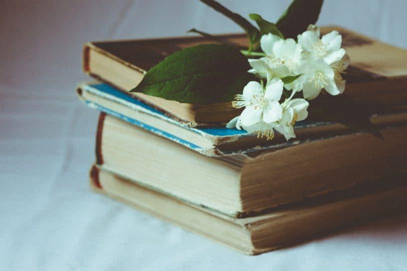 Quatro livros um em cima do outro e uma flor branca acima da pila de livros.