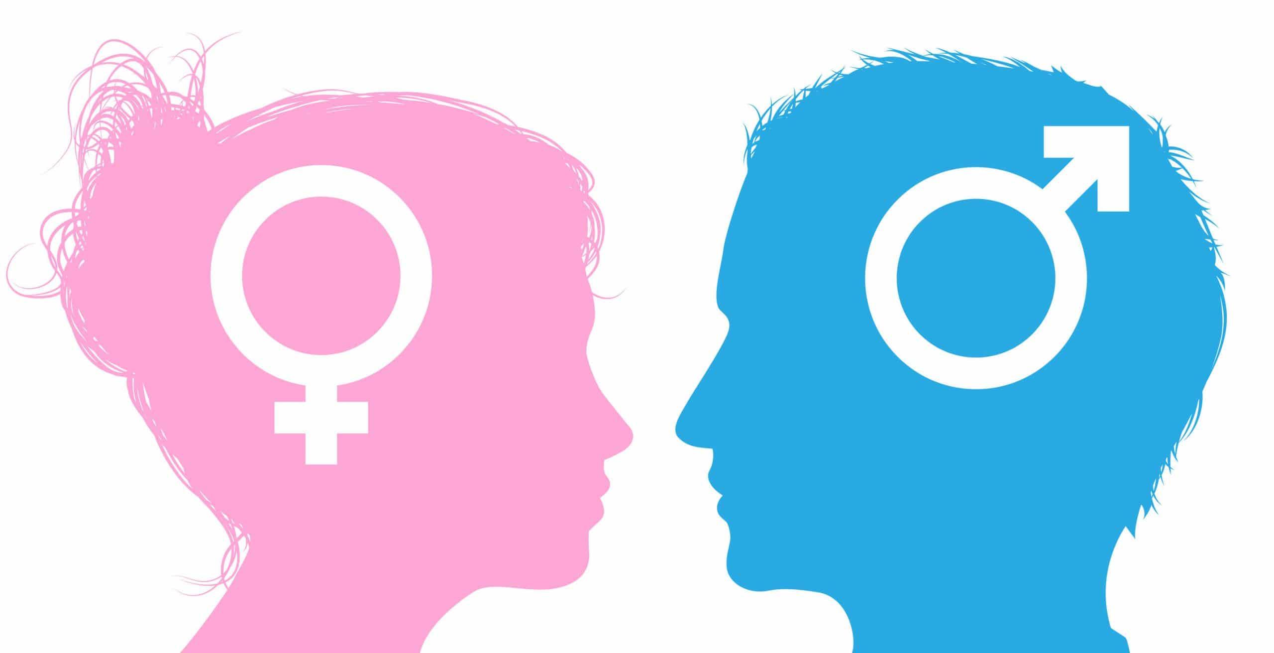 Silhuetas de cabeças de homem e mulher com ícones de símbolo de sexo masculino e feminino