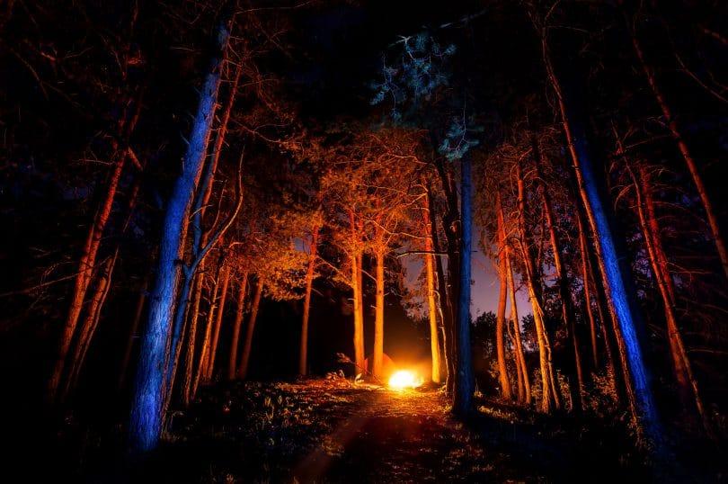 Floresta escura com fogueira à noite