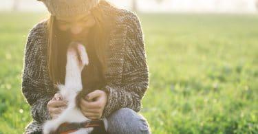 Jovem mulher fazendo carinho em seu cão em um parque.