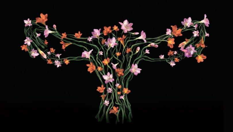Um arbusto com formato de útero cheio de flores.