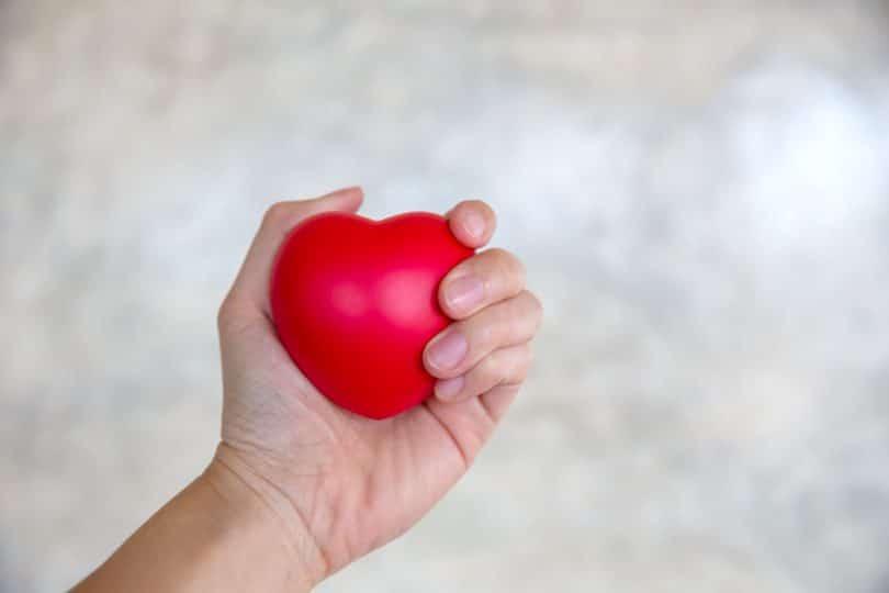 mão de mulher apertando o coração de borracha vermelha.