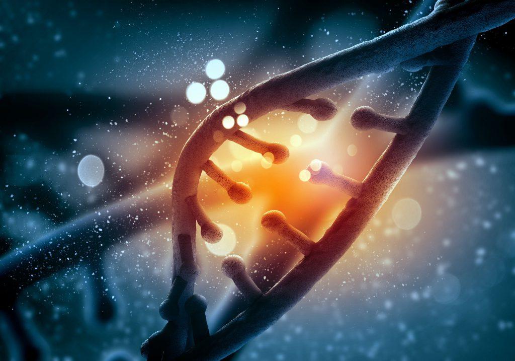 Molécula de DNA.